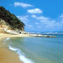白砂青松の白い砂浜と美しい松林